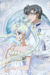 Pretty Guardian Sailor Moon Crystal: Vol 11