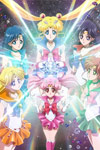 Pretty Guardian Sailor Moon Crystal: Vol 13